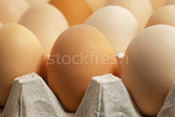 eggs. close up  Stock photo © avq