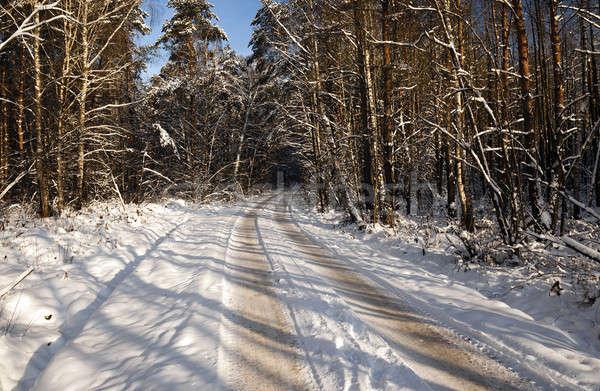 Tél út kicsi téli idény erdő természet Stock fotó © avq