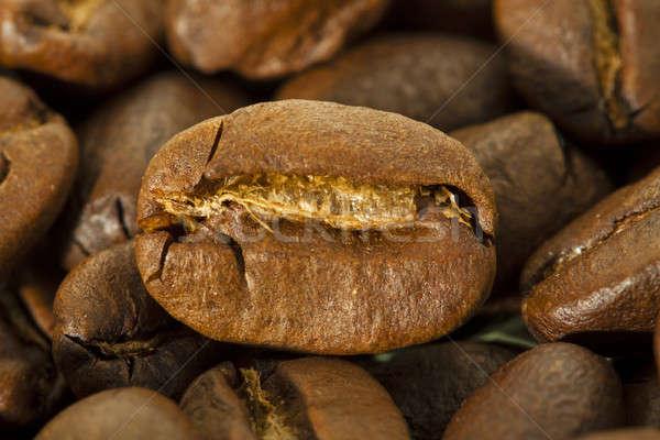 coffee grain   Stock photo © avq