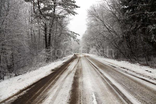 Inverno strada coperto neve stagione invernale albero Foto d'archivio © avq