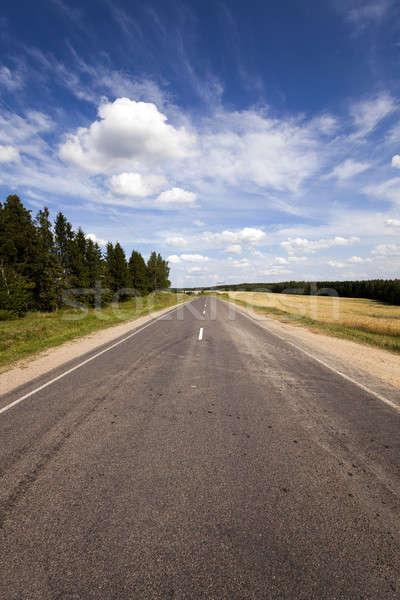 út kicsi vidéki nyáridő év Fehéroroszország Stock fotó © avq