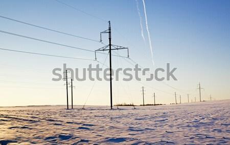 columns in the field   Stock photo © avq