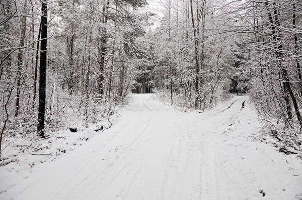 Kış yol kapalı kar kış sezonu araba Stok fotoğraf © avq