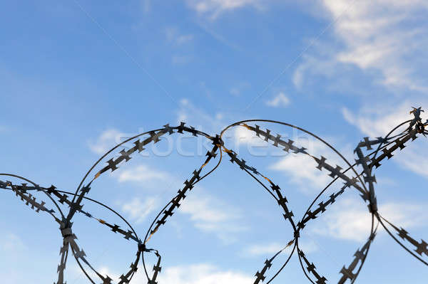 barbed wire, sky Stock photo © avq