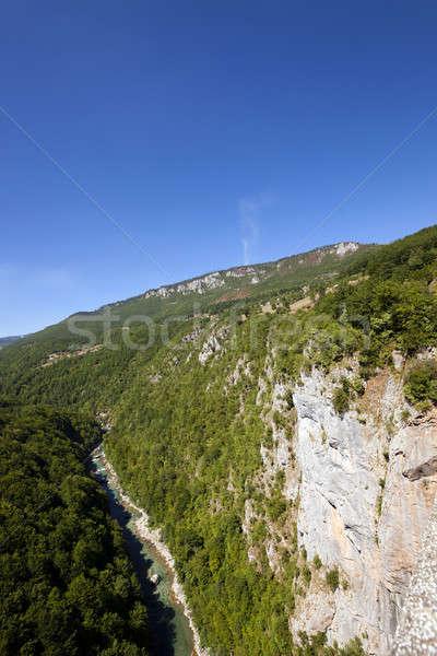 Berg wijk bergen gedekt bomen Stockfoto © avq