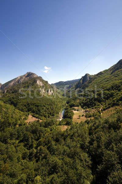 Hegy kerület Montenegró hegyek fedett különböző Stock fotó © avq
