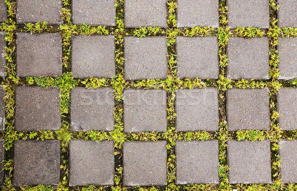 Сток-фото: трава · зеленый · ретро · кирпичных · завода · шаблон