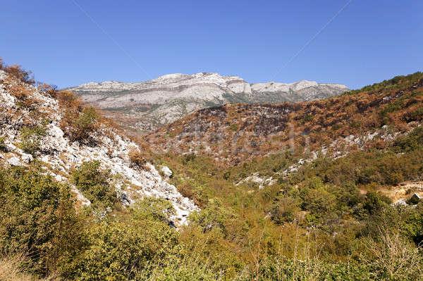the mountain district Stock photo © avq