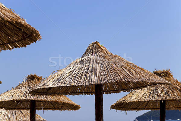 Parasole plaży drewna charakter Zdjęcia stock © avq