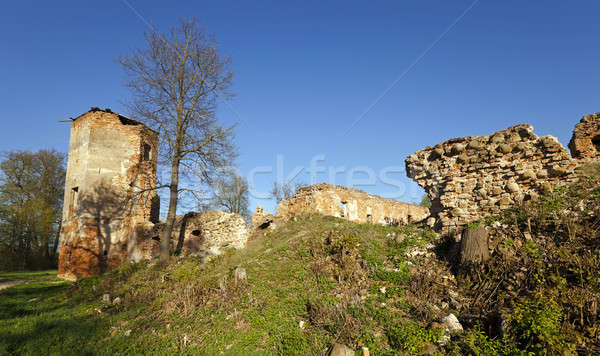 ruins   Belarus. Stock photo © avq