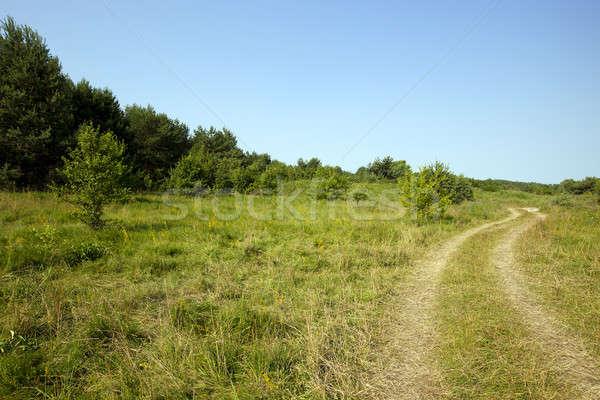 農村 道路 しない 車 太陽 自然 ストックフォト © avq