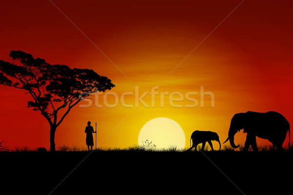 African Sunset Stock photo © axstokes