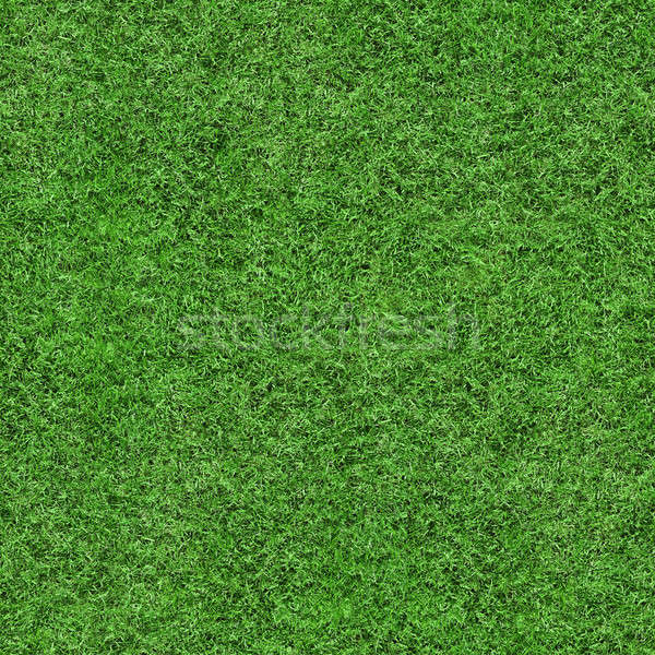 Grass Texture - Seamless Stock photo © axstokes
