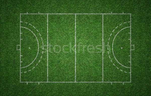 Grass Field Hockey Pitch Stock photo © axstokes