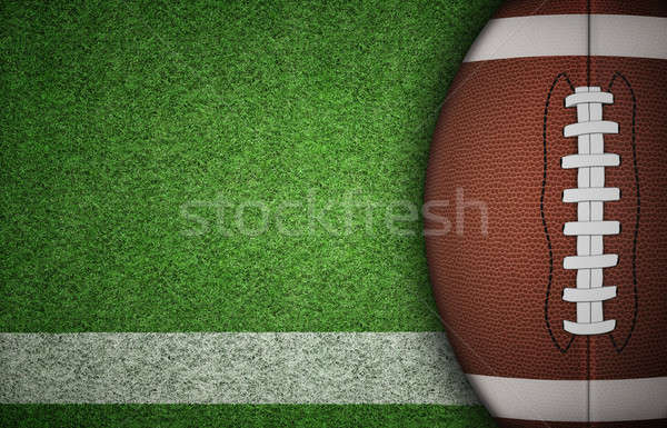 American Football Ball on Grass Stock photo © axstokes