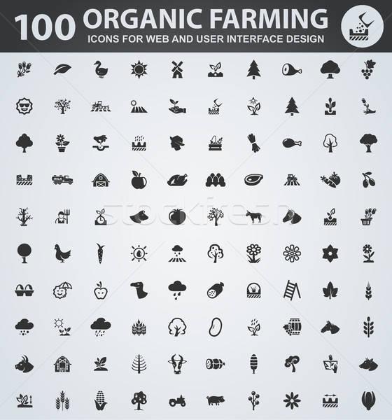 Organikus gazdálkodás ikon szett ikonok háló felhasználó Stock fotó © ayaxmr