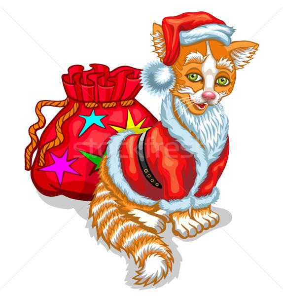 Kat kerstman zak geschenken geïsoleerd witte Stockfoto © ayaxmr