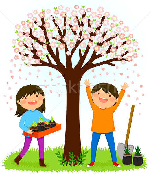 kids planting saplings under a blooming tree Stock photo © ayelet_keshet