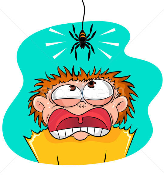 scary spider Stock photo © ayelet_keshet