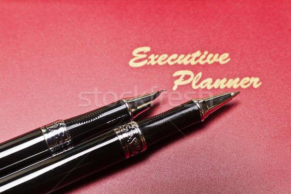 Igazgató tervező toll piros kettő tollak Stock fotó © azamshah72