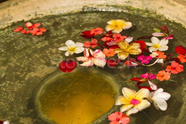 Flower Petals in Water Bowl Stock photo © azamshah72