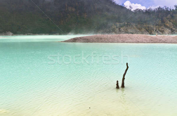 Vulcânico cratera lago dead tree água árvore Foto stock © azamshah72