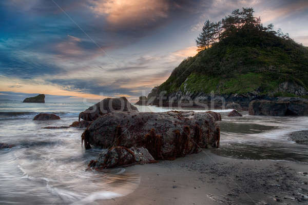 Shoreline Beach Scene from Northern California Stock photo © Backyard-Photography