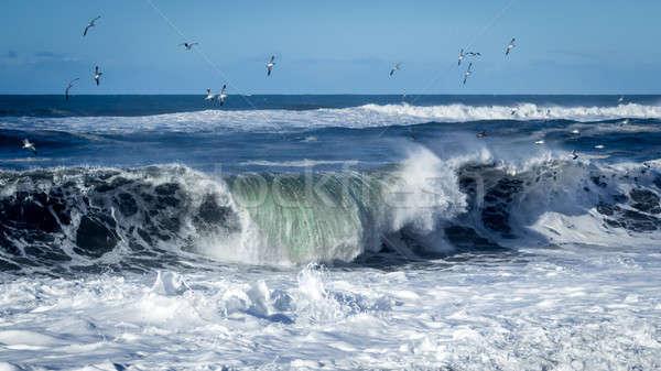 Foto stock: Ola · grande · playa · California · EUA · agua