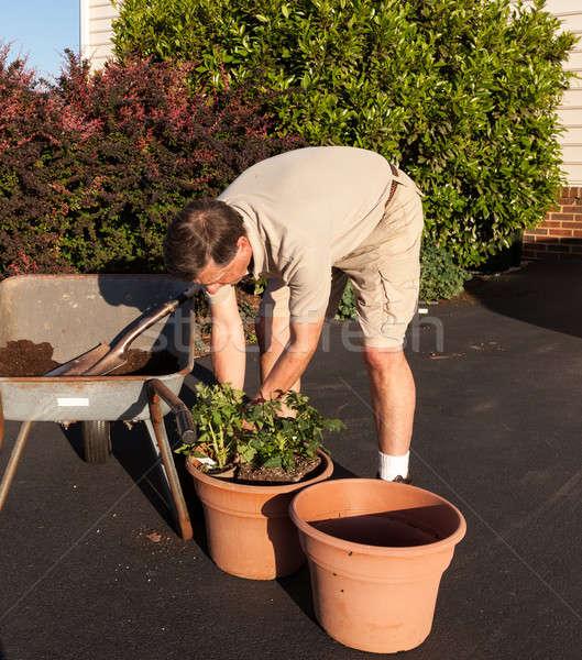 Senior homem solo carrinho de mão masculino sujeira Foto stock © backyardproductions