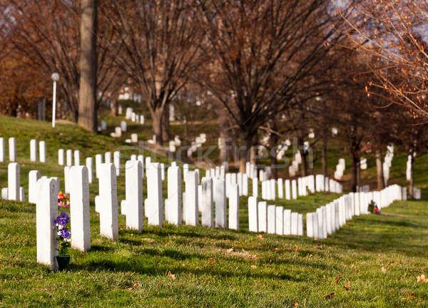 Xmas wreaths in Arlington Cemetery Stock photo © backyardproductions
