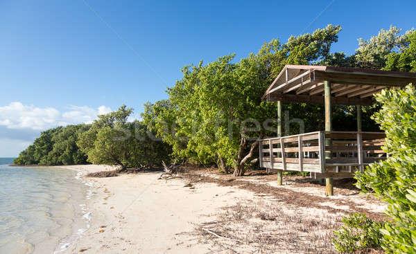 Florida sleutels strand kant van de weg route landschap Stockfoto © backyardproductions