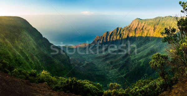 Panoramic view of Kalalau valley Kauai Stock photo © backyardproductions
