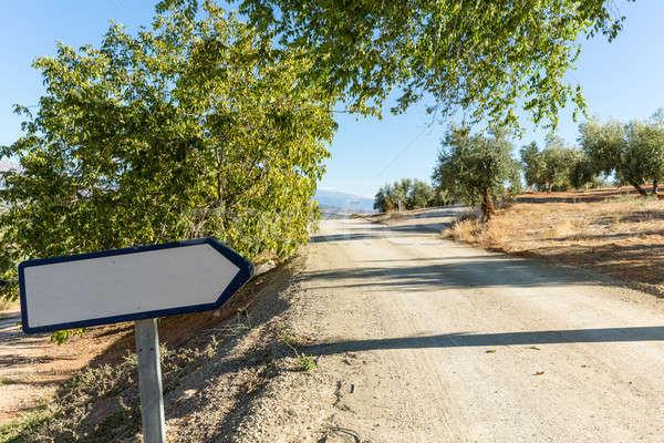 De oliva árboles ladera camino de tierra signo Foto stock © backyardproductions