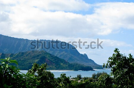 Na Pali coastline framed by trees Stock photo © backyardproductions