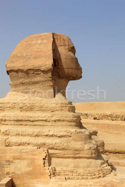 Close up of side view of Sphinx Cairo Stock photo © backyardproductions