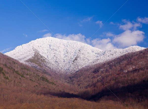 снега известный дымчатый горные мнение покрытый Сток-фото © backyardproductions