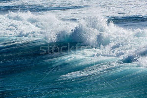Frozen motion of large wave at sea Stock photo © backyardproductions