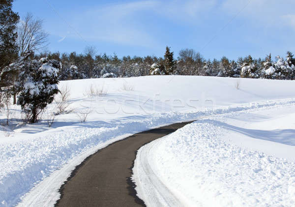 Empty road cleared of snow Stock photo © backyardproductions