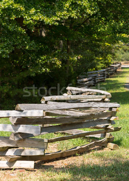 Split rail fence by edge of forest Stock photo © backyardproductions