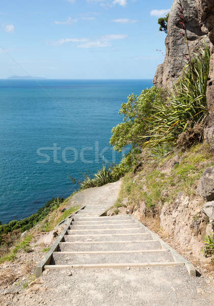 Steil wandelen pad rond New Zealand zee Stockfoto © backyardproductions