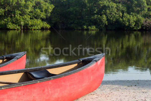 Prows or front of two plastic kayaks or canoes Stock photo © backyardproductions