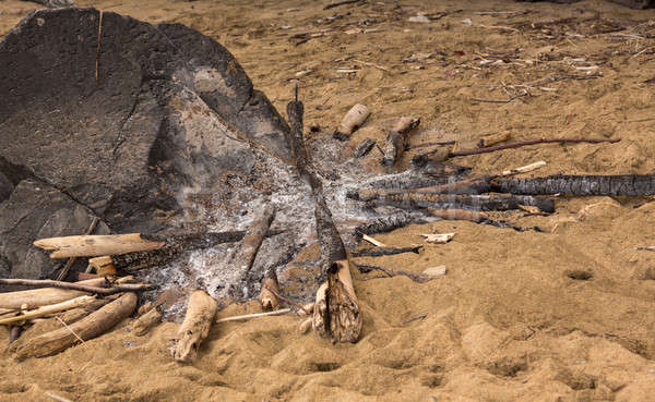 Remains of campfire on sandy beach Stock photo © backyardproductions