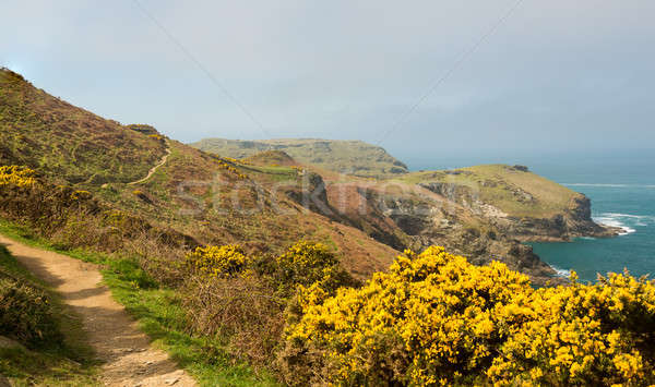 Ouest côte chemin cornwall Photo stock © backyardproductions