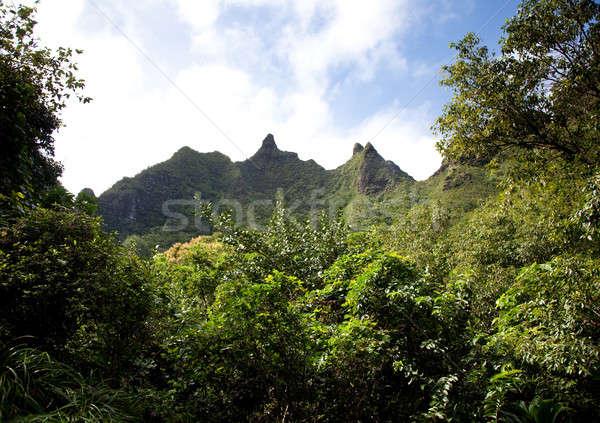 Na Pali Mountains Stock photo © backyardproductions