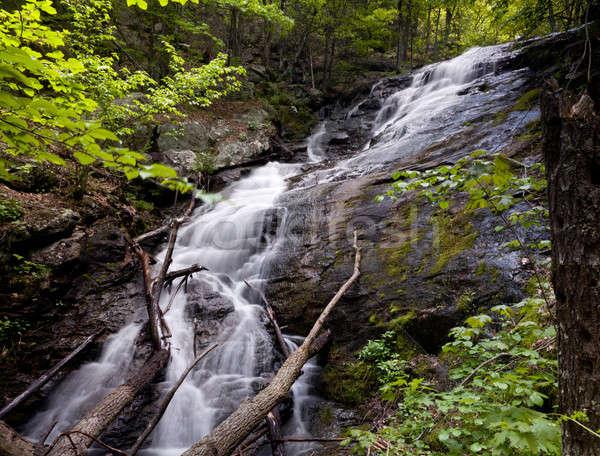 átfogó fut vízesés Virginia Stock fotó © backyardproductions