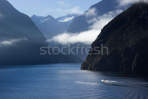 Fjord of Milford Sound in New Zealand Stock photo © backyardproductions