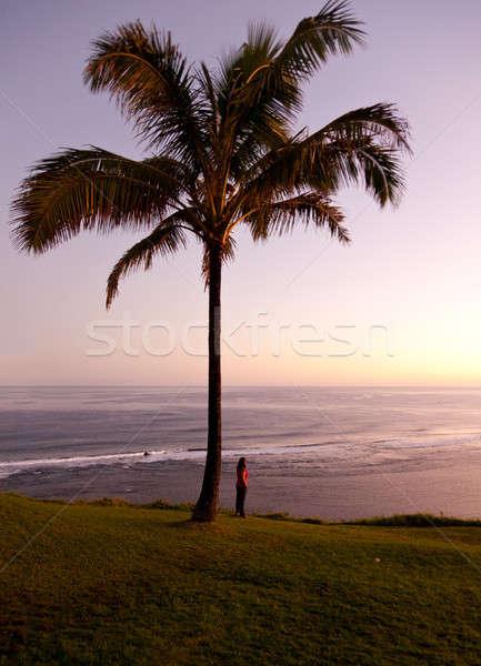 Woman watching sunrise in Kauai Stock photo © backyardproductions