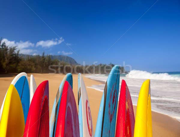 Surfboards at Lumahai beach Kauai Stock photo © backyardproductions