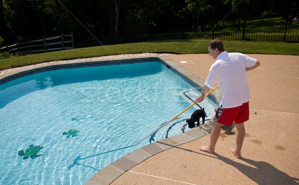 Man brushing pool Stock photo © backyardproductions