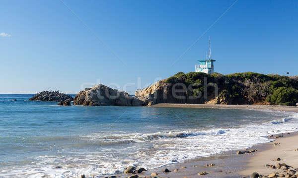California lifeguard post on sandy beach Stock photo © backyardproductions